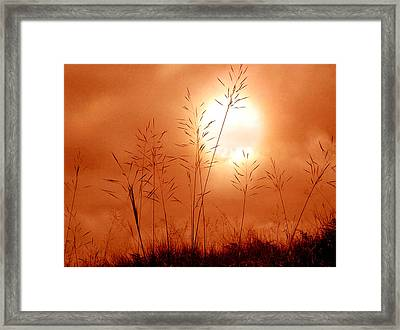 Lonely Planet Framed Print by Nirdesha Munasinghe