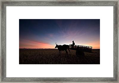 Long Day Framed Print