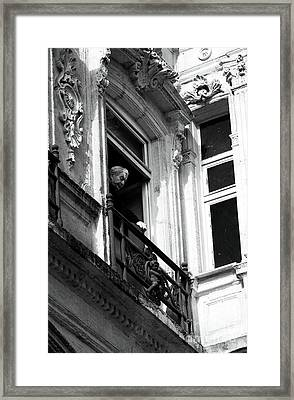 Looking Down Framed Print by John Rizzuto