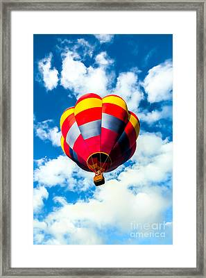 Looking Up Framed Print by Robert Bales