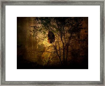Lost Framed Print by Julie Palencia