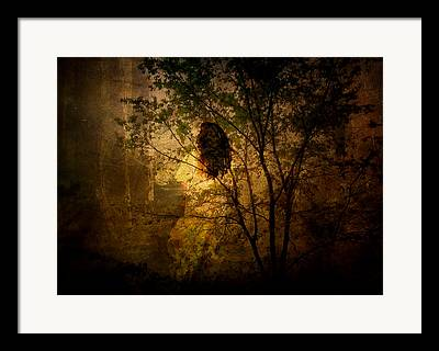 Finding The Way Framed Prints