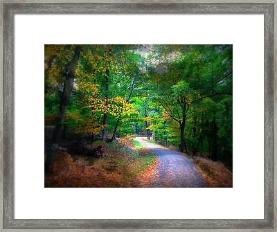 Lost On The Trail Framed Print by Diana Angstadt