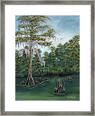 Louisiana Cypress Framed Print by Suzanne Theis