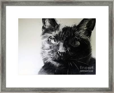 Love Framed Print by Valerie  Bruzzi
