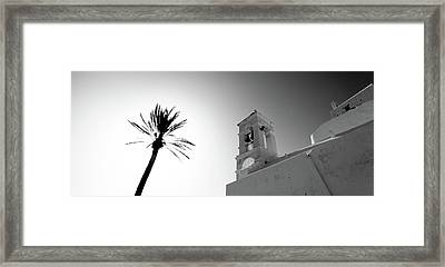 Low Angle View Of A Palm Tree Framed Print by Panoramic Images