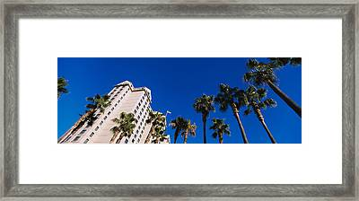 Low Angle View Of Palm Trees In Front Framed Print by Panoramic Images