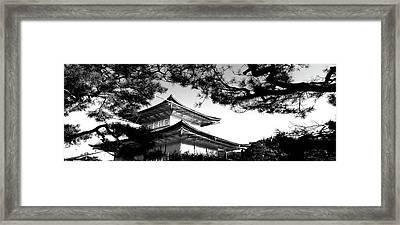 Low Angle View Of Trees In Front Framed Print by Panoramic Images