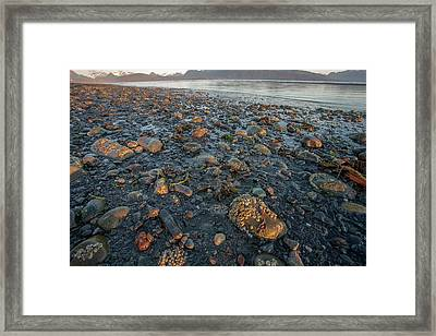 Low Tide At Sunrise Framed Print by Tom Norring