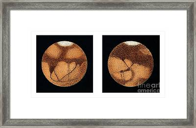 Lowells Observations Of Mars Framed Print by Detlev van Ravenswaay