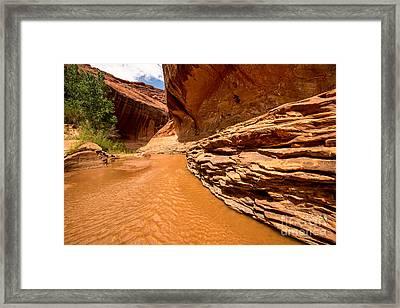 Lower Coyote Gulch - Utah Framed Print by Gary Whitton