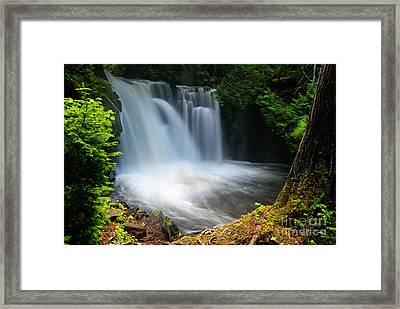 Lower Johnson Falls Framed Print