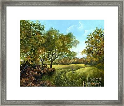 Framed Print featuring the painting Luray Pasture by Lynne Wright