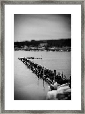 Lwv50046 Framed Print