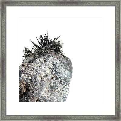 Magnetic Field Of Lodestone Framed Print by Science Photo Library
