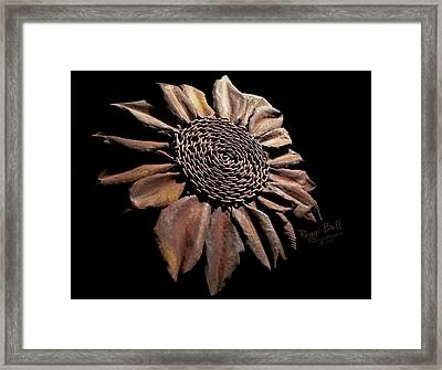 Mailbox Sunflower Framed Print