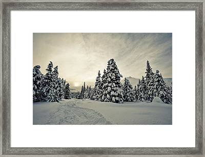 Make Tracks Framed Print