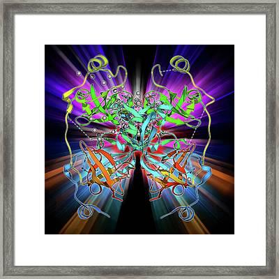 Malignant Brain-tumor-like Protein Framed Print by Laguna Design
