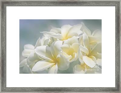 Manakai Framed Print by Sharon Mau