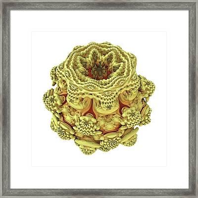 Mandelbulb Fractal Framed Print