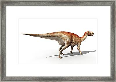 Mantellisaurus Dinosaur Framed Print by Jose Antonio Pe�as