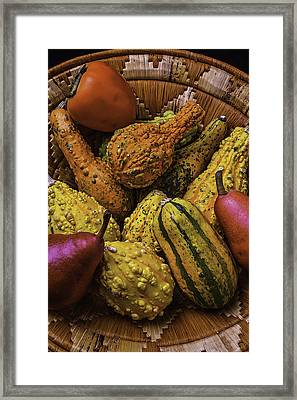 Many Colorful Gourds Framed Print