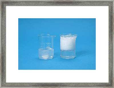 Marble In Acid Demonstration Framed Print