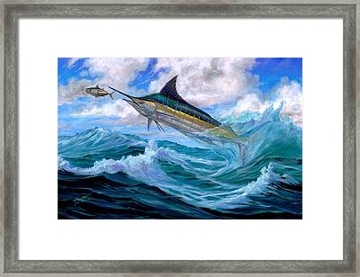 Marlin Low-flying Framed Print by Terry  Fox