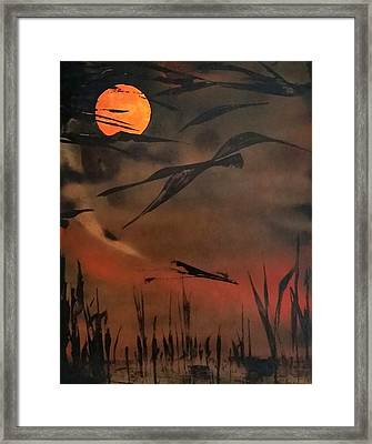 Marsh Birds Framed Print