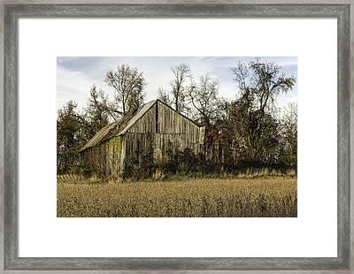 Maryland Barns Framed Print