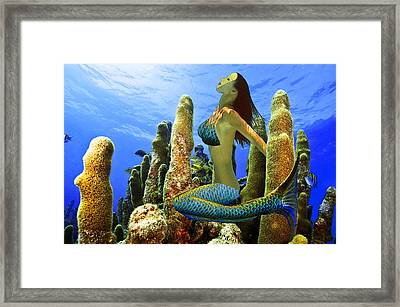 Masked Mermaid Framed Print by Paula Porterfield-Izzo