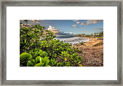 Maui Hawaii Framed Print