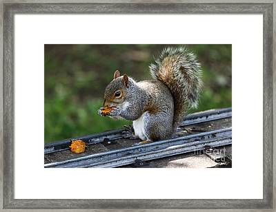 Meals On Rails Framed Print by James Brunker