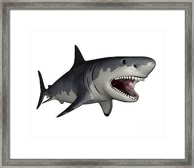 Megalodon Dinosaur Framed Print
