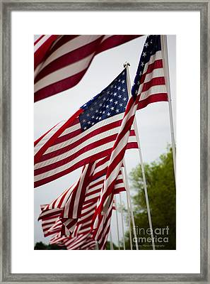 Memorial Day We Will Not Forget You  Framed Print by Wayne Moran