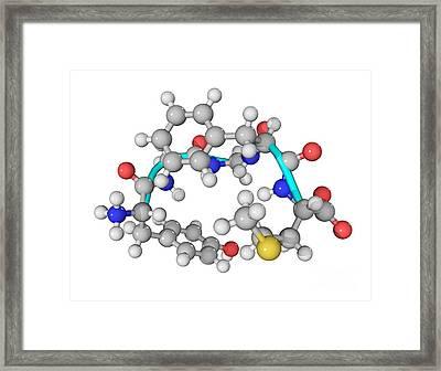 Met-enkephalin Molecule Framed Print by Laguna Design