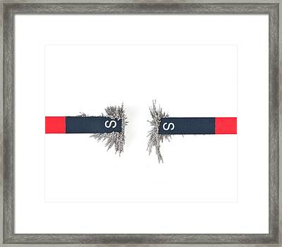 Metal Filings Attached To Magnets Framed Print by Dorling Kindersley/uig