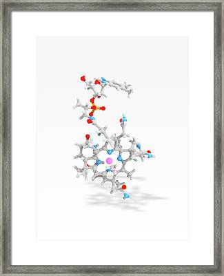 Methylcobalamin Framed Print by Ramon Andrade 3dciencia