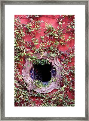 Mexico, San Miguel De Allende, Ivy Framed Print by Jaynes Gallery