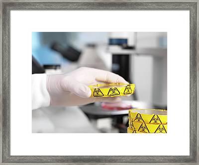 Microbiology Lab Framed Print