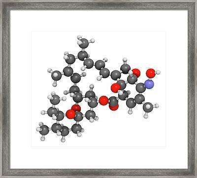 Milbemycin Oxime Antiparasitic Drug Framed Print
