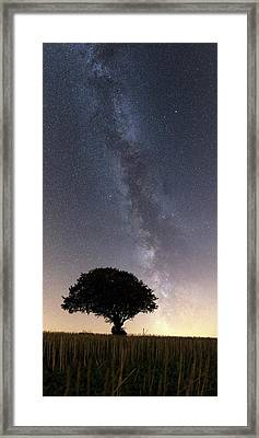 Milky Way Over Tree Framed Print by Laurent Laveder