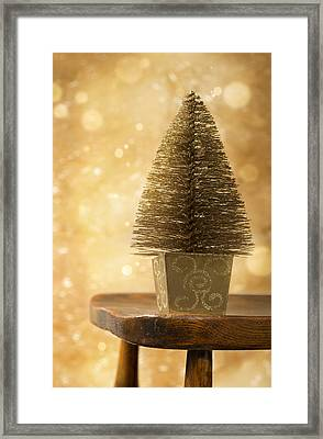 Miniature Christmas Tree Framed Print
