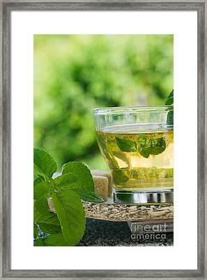 Mint Tea Framed Print by Mythja  Photography