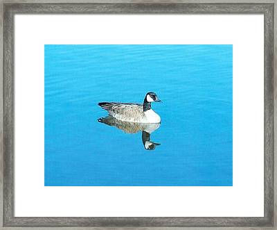 Framed Print featuring the photograph Mirror Goose by Kerri Mortenson