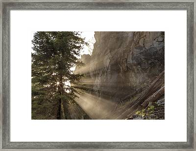Mist From Holland Falls Is Backlit Framed Print by Chuck Haney