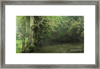 Misty Morning In Clatford Framed Print