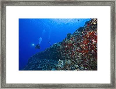 Molokini Maui Hawaii Usa Scuba Diver Framed Print by Stuart Westmorland