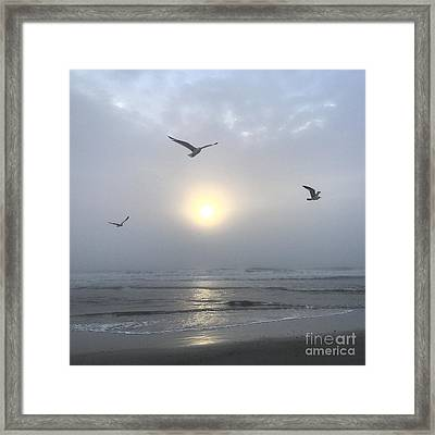Moment Of Grace Framed Print
