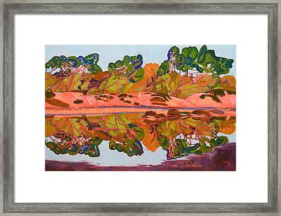 Monarch Reflections Framed Print by Jayne Schelden